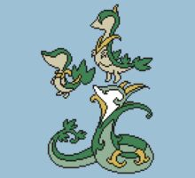 Snivy, Servine and Serperior by Funkymunkey