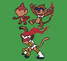 Chimchar, Monferno and Infernape by Funkymunkey