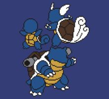 Squirtle, Wartortle and Blastoise by Funkymunkey