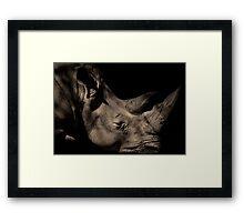 Save the Rhino Framed Print