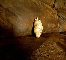 #1 Idaho Couch Potatoe by trueblvr