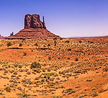 Monument Valley Panorama - Utah - USA by TonyCrehan