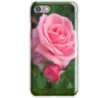 Pink Roses in Anzures 2 Blank P1F0 iPhone Case/Skin