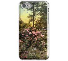 Rose Garden Trellis iPhone Case/Skin