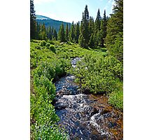 South Fork Ranch Creek Colorado  Photographic Print