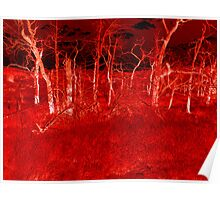 Crimson Forest Poster