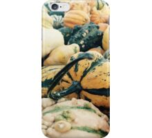 Colorful Gourds iPhone Case/Skin