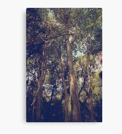 I'll Float Up Into the Wavy Trees Canvas Print