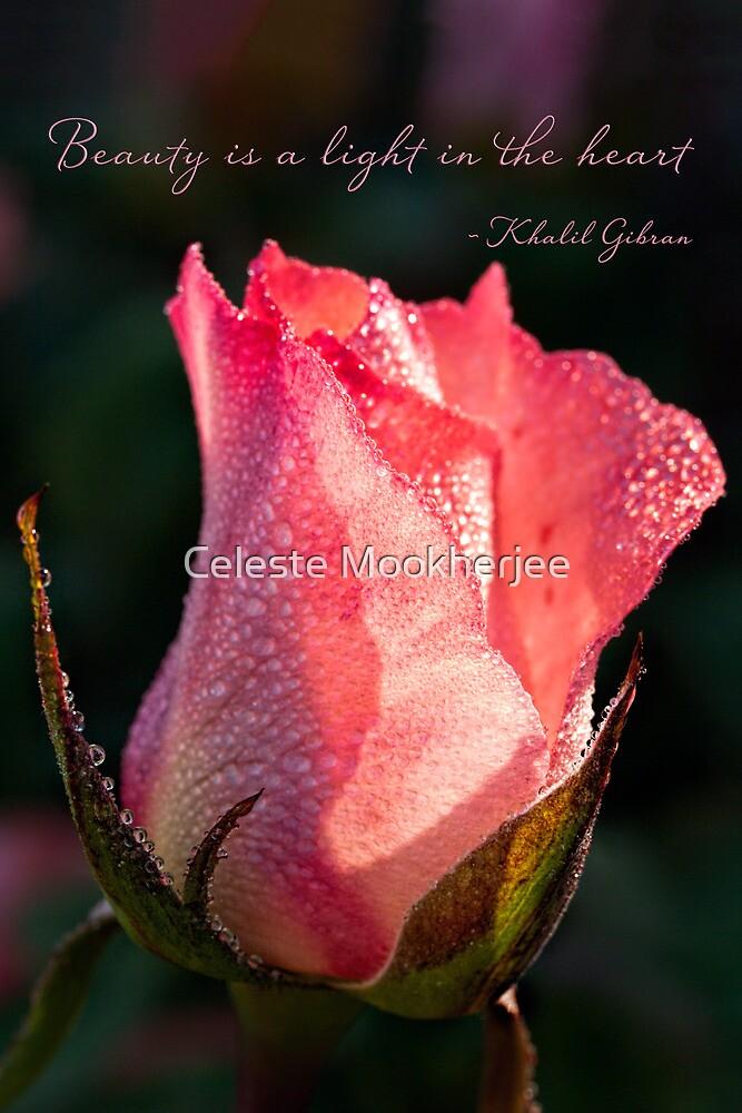 Inspirational rose by Celeste Mookherjee