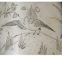 Lyrebird engraving on silver, circa 1880 Photographic Print