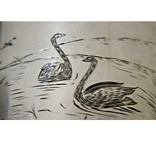 Black Swan engraving on silver, circa 1880 Photographic Print