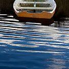 Forgotten Boat - Franklin, Tasmania by clickedbynic