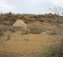Yurts on the Steppe by M-EK