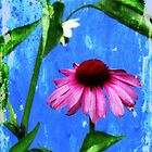 Dance of the Vintage Echinacea Flower by Myillusions