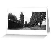 gray, trees, Slovenia, hedge Greeting Card