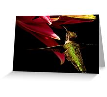 PAINTED HUMMER~ Greeting Card