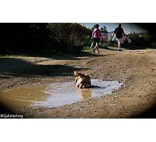 I LOVE Mud Photographic Print