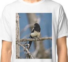 Black-Billed Magpie Classic T-Shirt