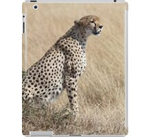 Looking About, Cheetah, Maasai Mara, Kenya iPad Case/Skin