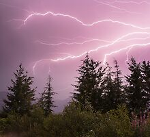 The Raw Power of Mother Nature!  by Jim Stiles