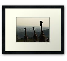 Head and Shoulders Above the Dusky Plains Framed Print