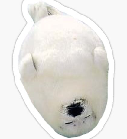 Fat Baby Seal Sticker