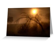 Glow - Jingelic NSW - The HDR Experience Greeting Card