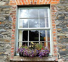 The Stable Window by Fara