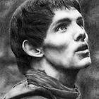 The Young Warlock by LisaBuchfink