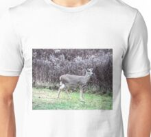 Attentive Doe Unisex T-Shirt