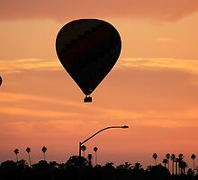 Hot Air Balloon Silhouette by HaveANiceDaisy