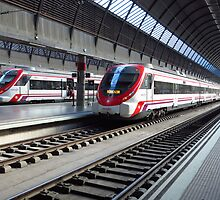 Trains at Santa Justa Station, Seville by wiggyofipswich