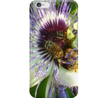 Close Up Of  Passion Flower with Honey Bee iPhone Case/Skin