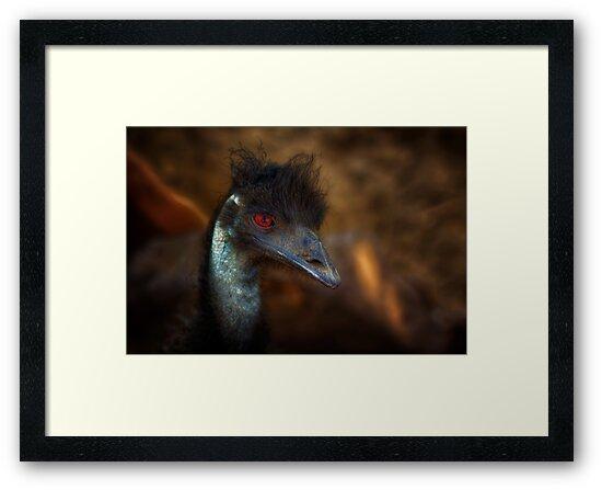 Emo Emu by Bob Larson