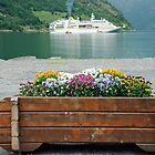 At the end of the Geirangerfjord by Arie Koene
