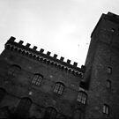 Medieval Manhattan - Lomo by chylng