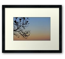 Twilight branches Framed Print