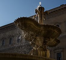 Rome's Fabulous Fountains - Piazza Farnese Fountain by Georgia Mizuleva