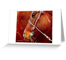 Equine Lines #2 Greeting Card