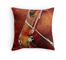 Equine Lines #2 Throw Pillow