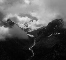 Swiss Alps  by Anthony Milnes