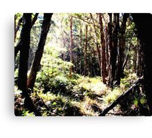 Lagoon Forest Canvas Print