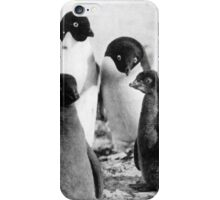 Adelie Penguin Family   Shackleton's Nimrod Expedition 1908 iPhone Case/Skin