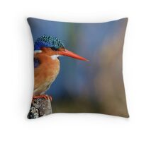 Colourful by nature............ Throw Pillow