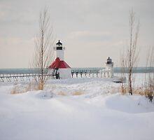 St Joseph North Pier Lighthouse - 45 by Debbie Mueller