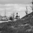 St Joseph North Pier Lighthouse - 44 by Debbie Mueller