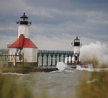 St Joseph North Pier Lighthouse - 43 by Debbie Mueller