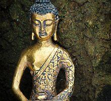 Buddha case by Sarah Horsman