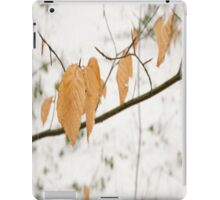 Leaf design case iPad Case/Skin