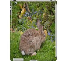 Bunny case iPad Case/Skin